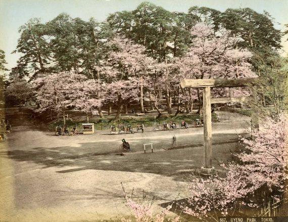 Uyeno Park Tokyo Print No 017
